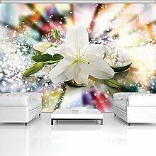 FORWALL Fototapete Vlies Tapete Moderne Wanddeko