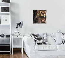 FORWALL Glasbild Glasfoto Echtglas Wandbild Tiger