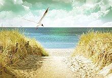 ForWall Laminierte Fototapete - Vlies Abwaschbar -