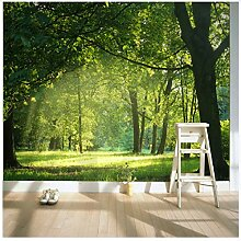 Foto 3D Tapete Für Wand 3D Wandbild Tapete Wald