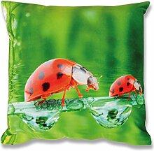 Fotodruck Kissenhülle Kissenbezug mit Motiv, bequem und dekorativ in vielen verschiedenen modernen Designs verfügbar ( Käfer / 40x40cm / mit Füllkissen )