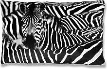 Fotodruck Kissenhülle Kissenbezug mit Motiv, bequem und dekorativ in vielen verschiedenen modernen Designs verfügbar (40x60cm / Zebra)