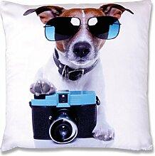 Fotodruck Kissenhülle mit Motiv 30x30 cm Fotoprint Kissenbezug, spaßig bequemes Wohnaccessoire in vielen verschiedenen Motiven erhältlich (Hund Kamera)