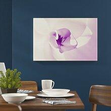 Fotografischer Leinwanddruck Orchid Brayden Studio