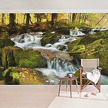 Fototapete–Wasserfall Herbstlicher Wald–selbstklebend Tapete, Funktion, wall-art, Tapeten, Fotografie, Dimension: 270cm x 432cm
