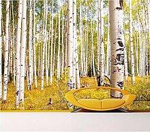 Fototapete 3D Birkenwald Moderne Vlies Tapete
