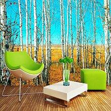 Fototapete 3D Birkenwald Naturlandschaft Wand