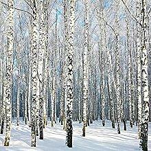 Fototapete 3D Effekt Birkenwald Mit Weißem Schnee