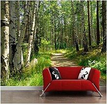 Fototapete 3d Effekt Birkenwald Vlies Tapeten