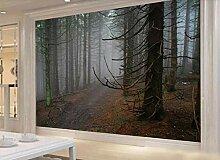 Fototapete 3D Effekt Morgennebel Waldweg