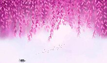 Fototapete 3D Effekt Tapeten Lila Blütenrebe