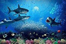Fototapete 3d Effekt Unterwasser-Welthai-Koralle