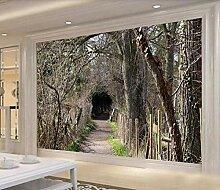 Fototapete 3D Effekt Waldtunnelhöhle Wandbilder