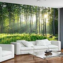 Fototapete 3D Forest Sunshine Mauer Tapeten Retro
