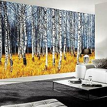 Fototapete 3D Foto Wallpaper Herbst Weiß Birke