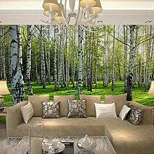 Fototapete 3D Grüne Birke Wald Zauberstab Tapete