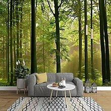 Fototapete 3D Grünes Waldsonnenlicht