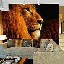 Fototapete 3d Löwe Vlies Tapete Dekorativer