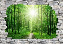 Fototapete 3D Sunny Forest Mauer (B/H): 384/260 cm