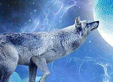 Fototapete 3D Tapete Mochizuki Wolf Blauer