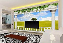 Fototapete 3D Tapeten Wandbilder Balkon Gras