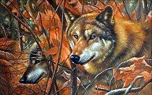 Fototapete 3D Tapeten Wandbilder Dschungel Wolf
