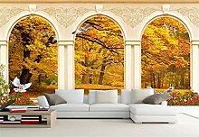 Fototapete 3D Tapeten Wandbilder Waldrömische