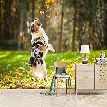 Fototapete 3D Tierhund Ahornblatt Vlies Fototapete