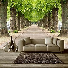 Fototapete 3D Wald Wand Dekoration Wandbilder TV