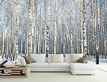 Fototapete 3D Wandtapete Winter Birkenwald
