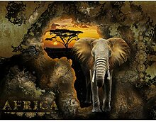 Fototapete Afrika Elefant 352 x 250 cm - Vlies