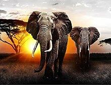 Fototapete Afrika Elefant 396 x 280 cm - Vlies