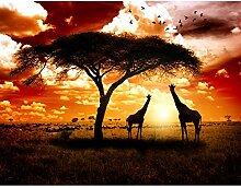 Fototapete Afrika Giraffen 396 x 280 cm Vlies Wand