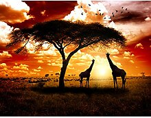 Fototapete Afrika Giraffen Vlies Wand Tapete