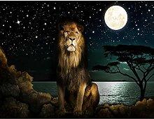Fototapete Afrika Löwe 352 x 250 cm - Vlies Wand