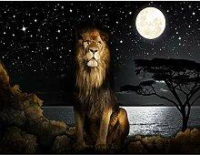 Fototapete Afrika Löwe 396 x 280 cm - Vlies Wand