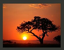 Fototapete Afrika: Sonnenuntergang 193 cm x 250 cm