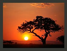 Fototapete Afrika: Sonnenuntergang 270 cm x 350 cm