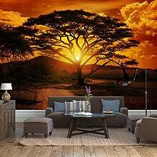 Fototapete Afrika Sonnenuntergang Vlies Tapete