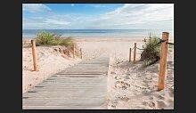 Fototapete Am Strand 245 cm x 350 cm