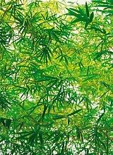 Fototapete, Bamboo, 4-teilig - 183x254cm,