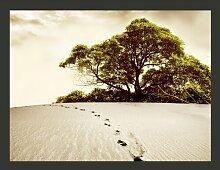 Fototapete Baum in der Wüste 154 cm x 200 cm