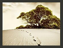 Fototapete Baum in der Wüste 309 cm x 400 cm