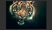 Fototapete Bengal Tiger 154 cm x 200 cm East Urban