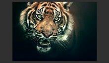 Fototapete Bengal Tiger 193 cm x 250 cm East Urban