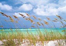 Fototapete Bildtapete Ozean Brise