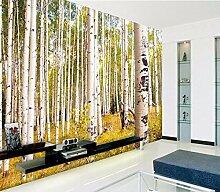 Fototapete Birkenwald 3D Art Design, das für