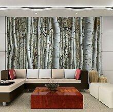 Fototapete Birkenwald Moderne Wanddeko Design