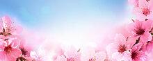 Fototapete Blumen 105654506