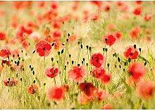 Fototapete Blumen - ALLE BLUMENMOTIVE auf einen